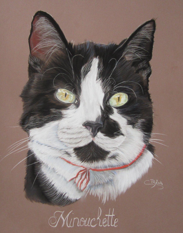 Les Pastels De Chats Artiste Animalier