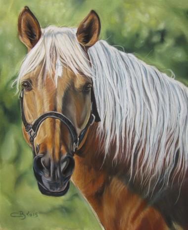 cheval aux pastels