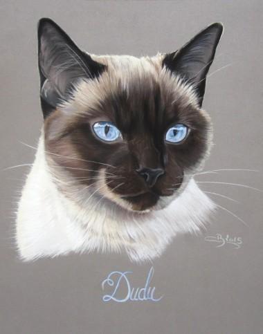 dessin chat siamois