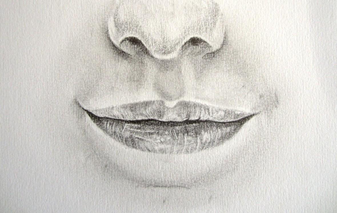 Vid o comment dessiner une bouche artiste animalier - Comment deboucher une oreille bouchee par l eau ...