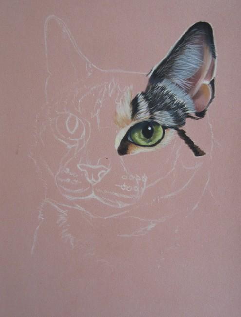 Souvent Dessin et peinture - vidéo 1575 : Portrait de chatte tricolore aux  GX23
