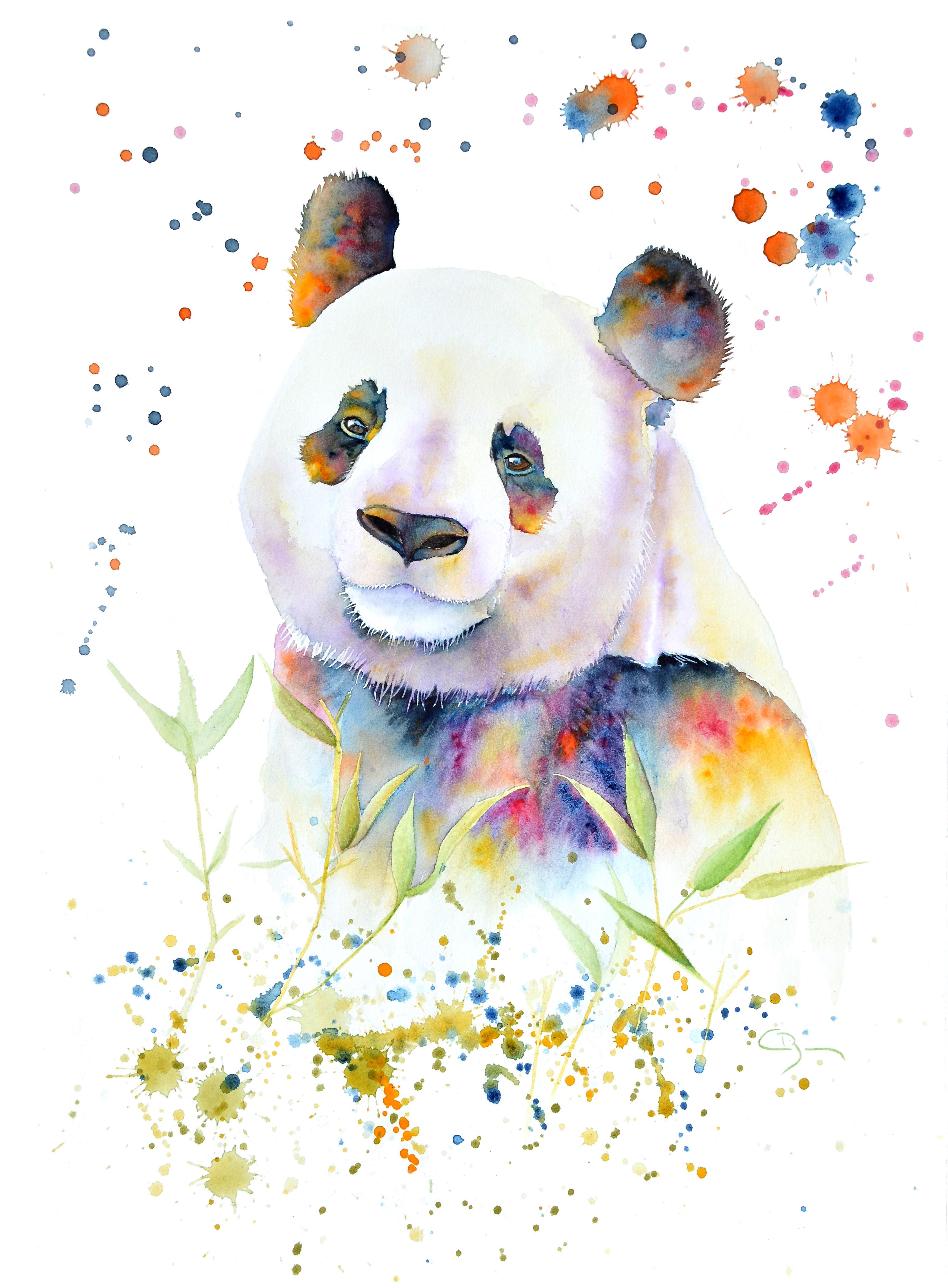 Panda multicolore