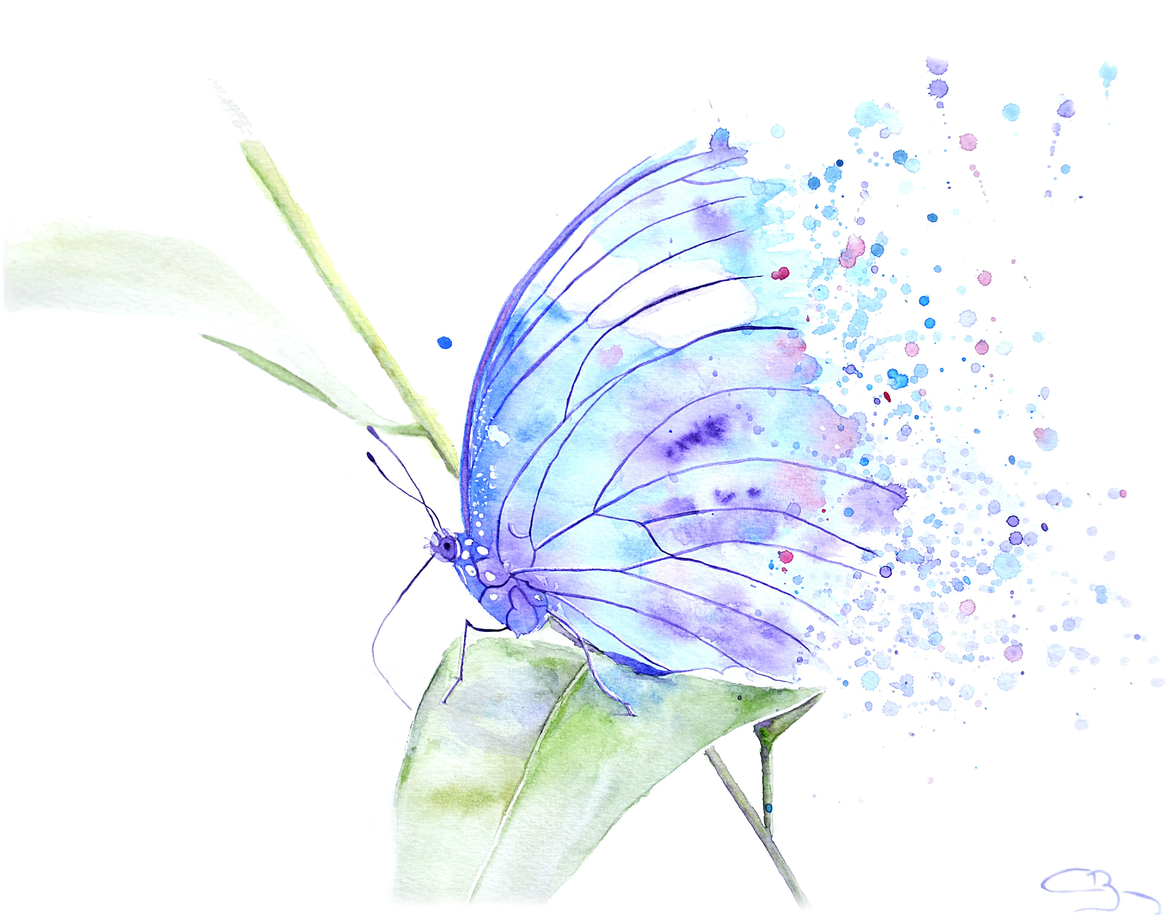 Papillon surréaliste