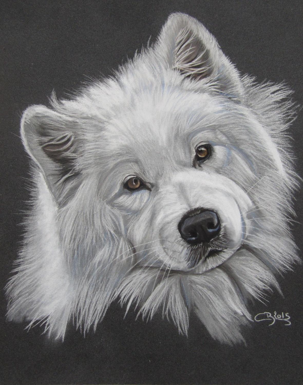 Les pastels de chiens artiste animalier - Dessin de chiot ...
